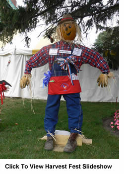 Prize winning scarecrow at the Petersburg IL 2010 Harvest Fest